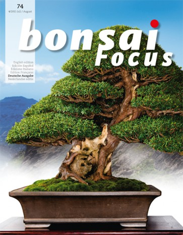 Bonsai Focus DE #74