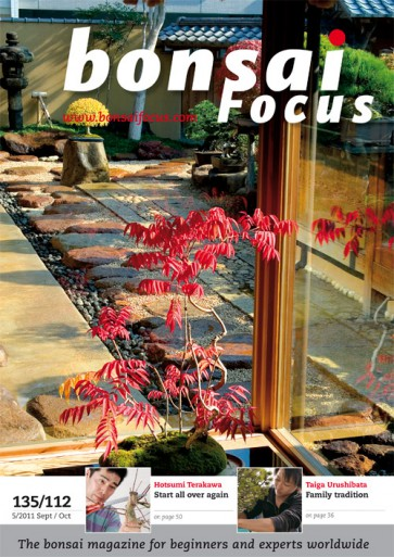 Bonsai Focus EN #112/#135