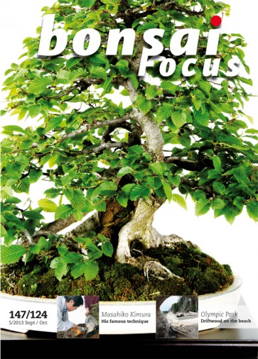 Bonsai Focus EN #124/#147