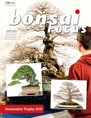 Bonsai Focus EN #139/#162