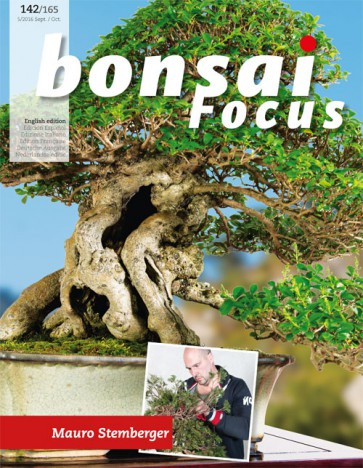 Bonsai Focus EN #142/#165
