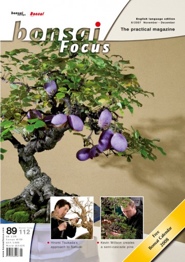Bonsai Focus EN #89