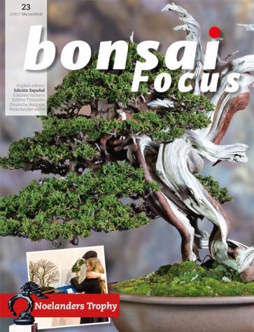 Bonsai Focus ES #23