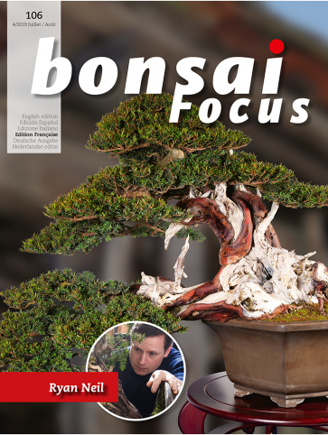Bonsai Focus FR #106