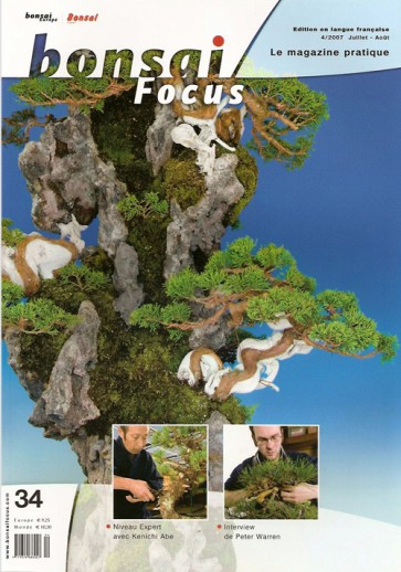 Bonsai Focus FR #34