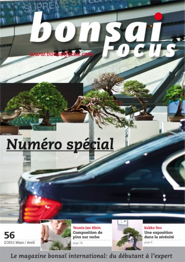Bonsai Focus FR #56