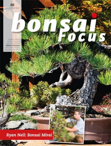 Bonsai Focus FR #88