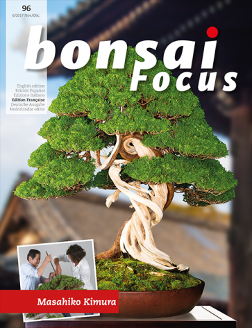 Bonsai Focus FR #96