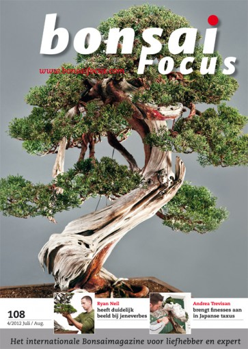 Bonsai Focus NL #108