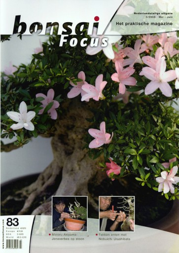 Bonsai Focus NL #83