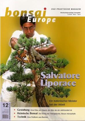 Bonsai Europe DE #12
