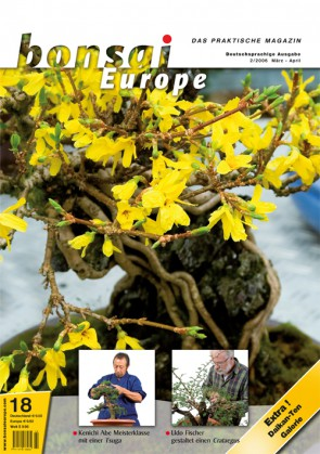 Bonsai Europe DE #18