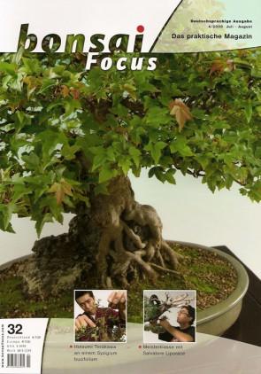 Bonsai Focus DE #32
