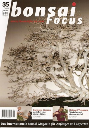 Bonsai Focus DE #35