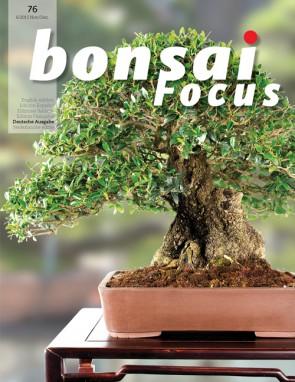 Bonsai Focus DE #76