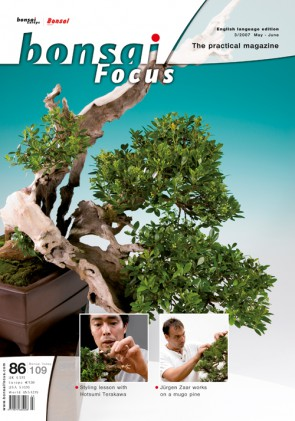 Bonsai Focus EN #86