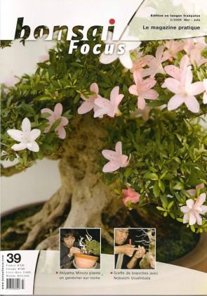 Bonsai Focus FR #39