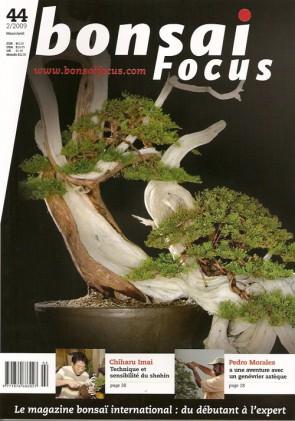 Bonsai Focus FR #44