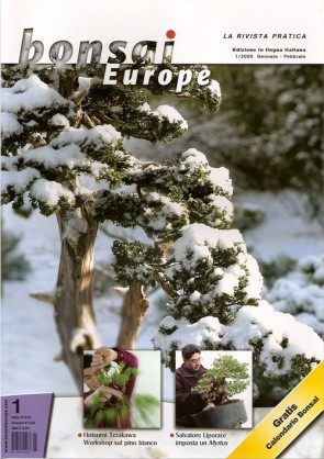 Bonsai Europe IT #01