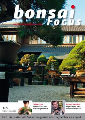 Bonsai Focus NL #109