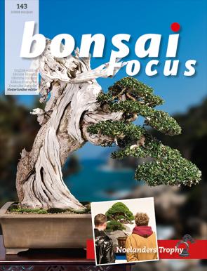 Bonsai Focus NL #143