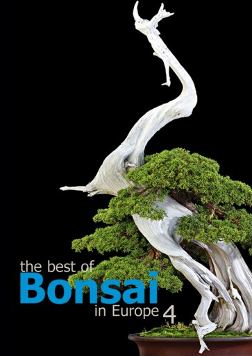 The best of Bonsai in Europe #4