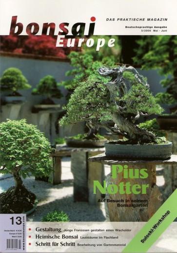 Bonsai Europe DE #13
