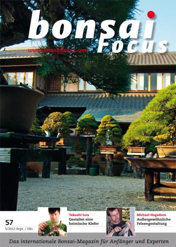 Bonsai Focus DE #57