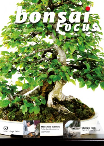 Bonsai Focus DE #63