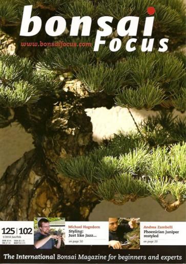 Bonsai Focus EN #102/#125