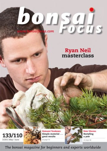 Bonsai Focus EN #110/#133