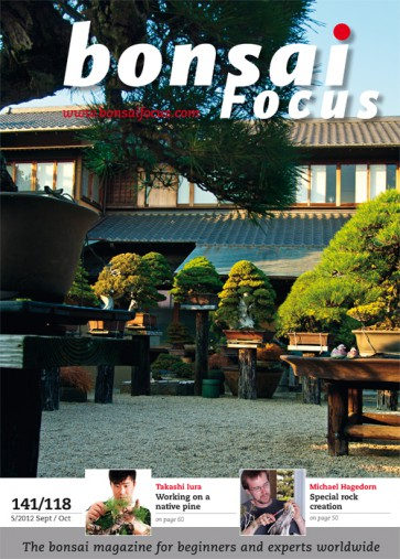 Bonsai Focus EN #118/#141