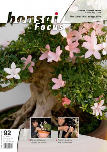 Bonsai Focus EN #92