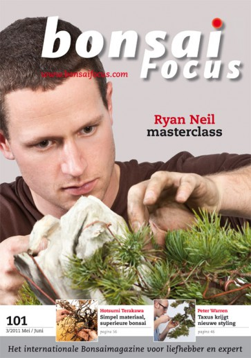 Bonsai Focus NL #101