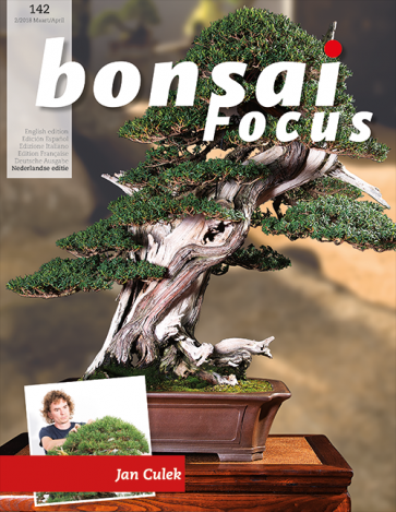 Bonsai Focus NL #142