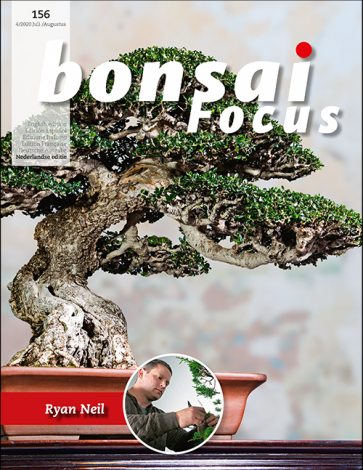 Bonsai Focus NL #156