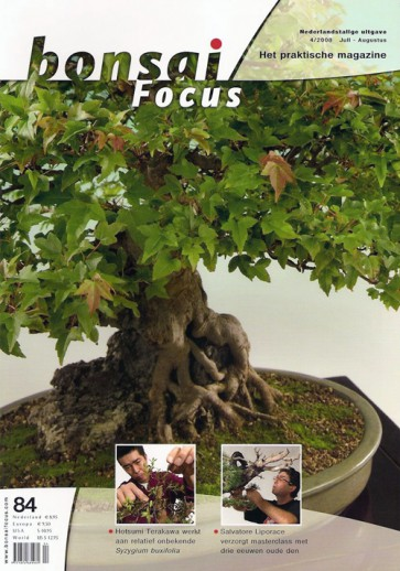 Bonsai Focus NL #84