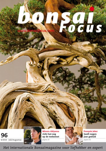 Bonsai Focus NL #96