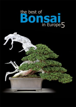The best of Bonsai in Europe #5
