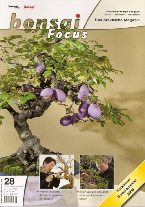 Bonsai Focus DE #28