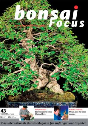 Bonsai Focus DE #43