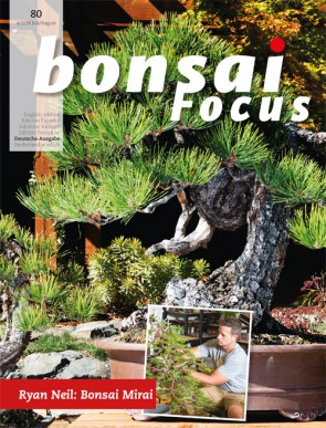 Bonsai Focus DE #80