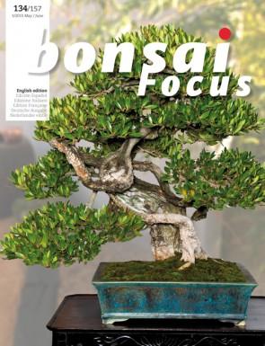 Bonsai Focus EN #134/#157
