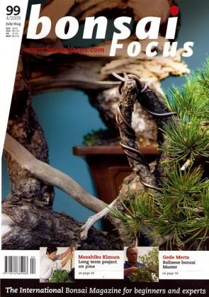 Bonsai Focus EN #99