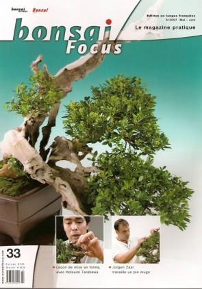 Bonsai Focus FR #33