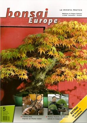 Bonsai Europe IT #05