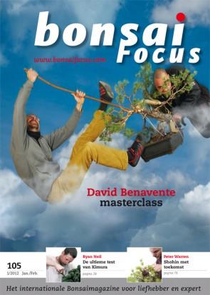 Bonsai Focus NL #105