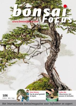 Bonsai Focus NL #106