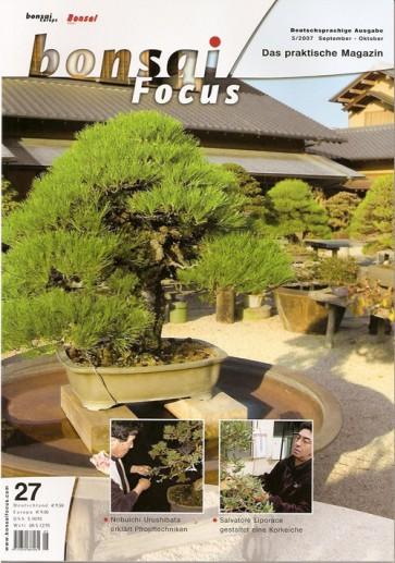 Bonsai Focus DE #27