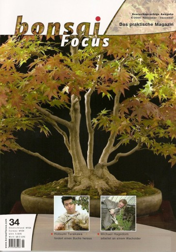 Bonsai Focus DE #34